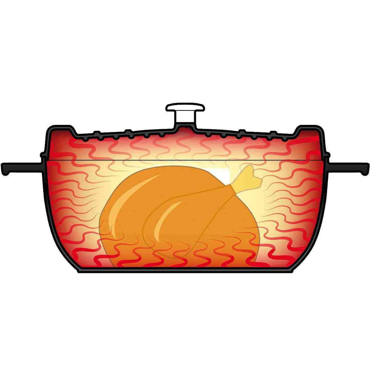 arcana roaster oval red